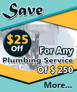 professional plumber offers